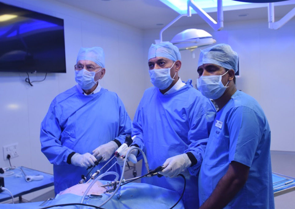 master course liver resection cemast